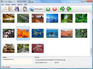 dhtml window java script Jquery Photo Gallery