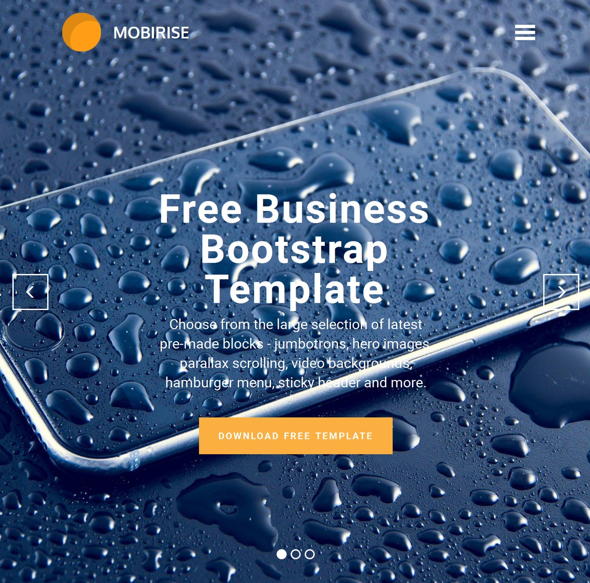 HTML Responsive Website Templates Themes Extensions